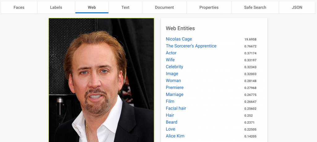Nicolas Cage Web Entities