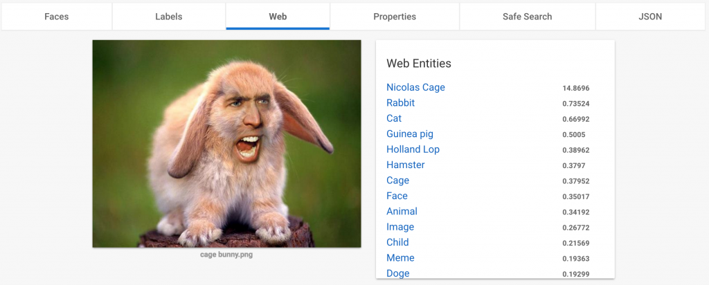 Nicolas Cage Rabbit Web Entities